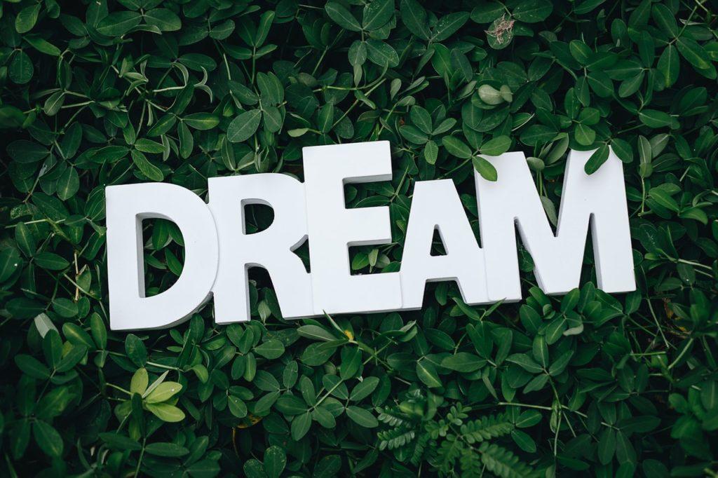 What dreams will you make come true?
