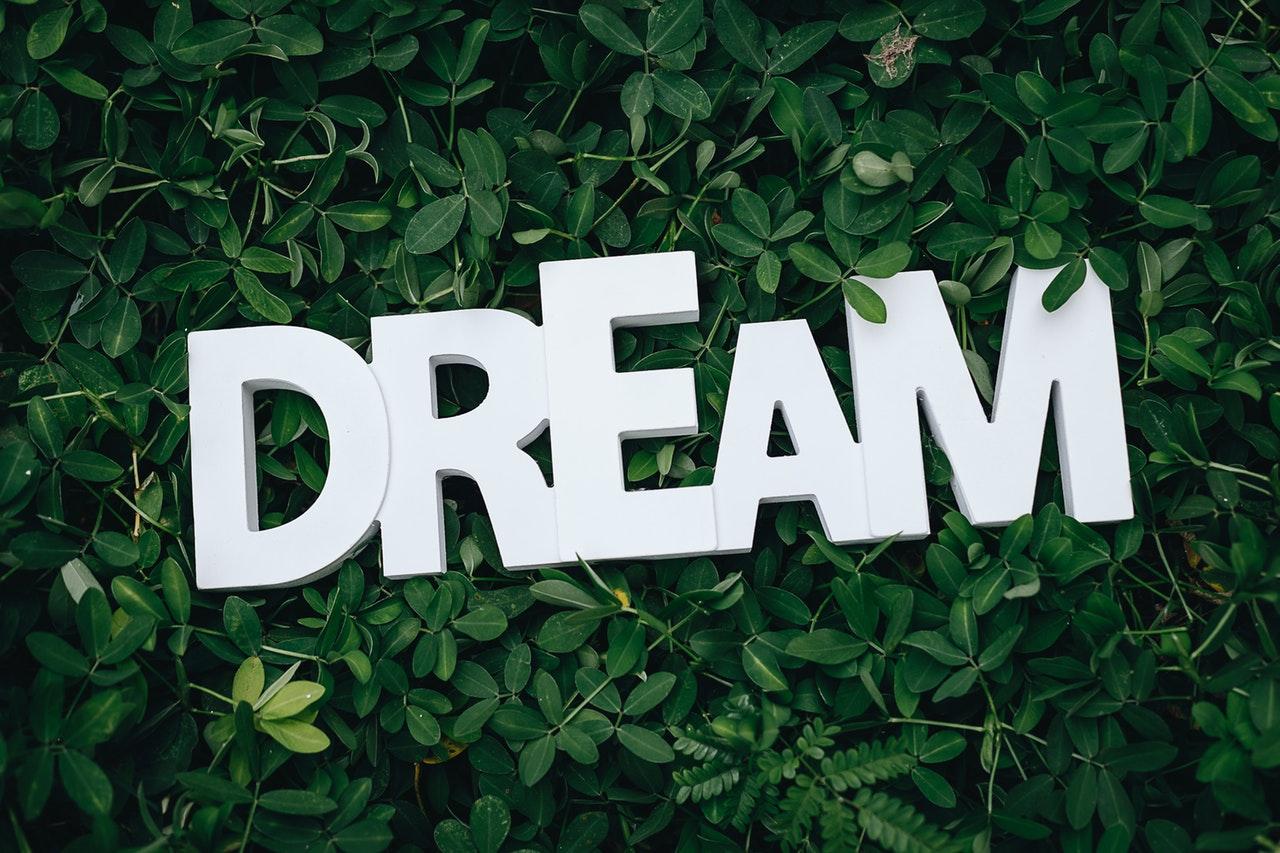 Make some dreams come true on Make Your Dream Come True Day