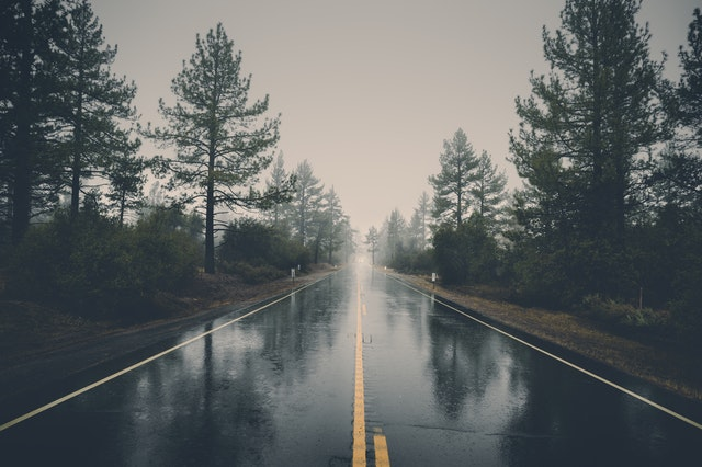 Image shows a long wet road between trees, fading off into the far distance